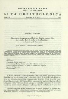 Terytorializm dzięcioła dużego, Dendrocopos major (L.) w borze sosnowym