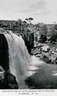 Am Roroima : bei meinen Freunden, den Indianern vom rosigen Fels