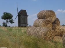 Chrosno, windmill