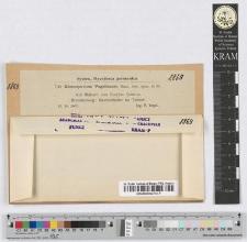 Gloeosporium Vogelianum Sacc. nov. spec.