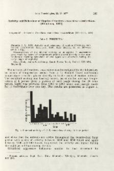 Activity and behaviour of captive Crocidura suaveolens cassiteridum (Hinton, 1924)