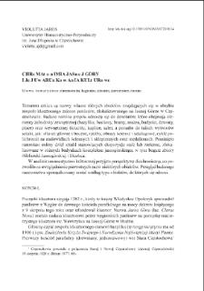 Chrematonimia Jasnej Góry i jej uwarunkowania kulturowe