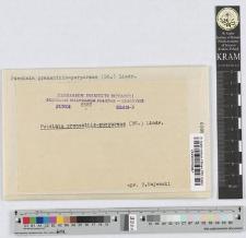 Puccinia Prenanthis-purpureae (DC) Lindr.