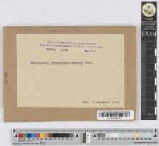 Melampsora Evonymi-Caprearum Kleb.