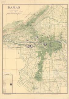 Damas : echelle 1:10.000