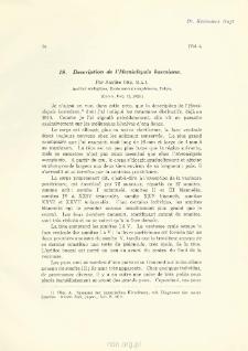 Description de l'Hemiclepsis kasmiana