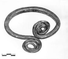 bransoleta (Miechowice) - analiza chemiczna