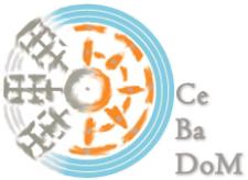 Czarnocin, watermill
