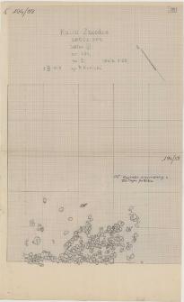 KZG, VI 401 D, plan archeologiczny wykopu (rumosz kamienny)