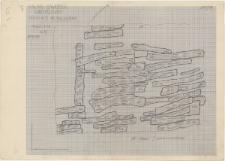 KZG, VI 502 C, plan archeologiczny konstrukcji drewnianych