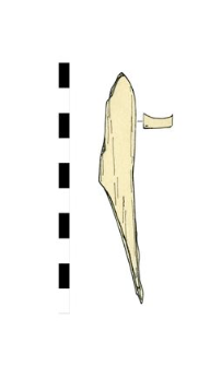 kość, fragment