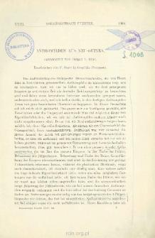 Anthomyiden aus Neu-Guinea, gesammelt von Herrn L. Biró