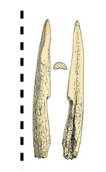 róg, obroniony, fragment