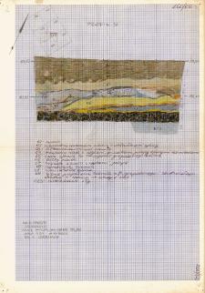 KZG, I 399 A, profil archeologiczny N wykopu