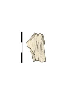 skull fragment