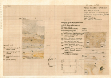 KZG, VI 301 D, profil archeologiczny W i plany wykopu