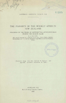 The parasite of the Woolly Aphis in New Zealand: Progress of the work of distributing Aphelinus