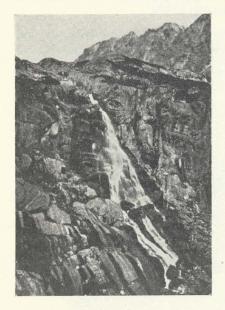 Trichopteren der Hohen Tatra