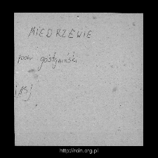 Niedrzew. Files of Gostynin district in the Middle Ages. Files of Historico-Geographical Dictionary of Masovia in the Middle Ages