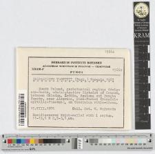 Exobasidium vaccinii (Fuck.) Woronin 1867