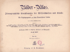 Bilder-Atlas : ikonographische Encyklopädie der Wissenschaften und Künste : ein Ergänzungswerk zu jedem Conversation-Lexikon. Bd 8, Geographie