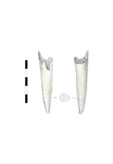 item, bone, fragment