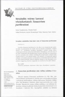 Metabolity wtórne korzeni wiośnikowatych Tanacetum parthenium