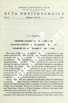 Calandrella cheleënsis Swinhoe a valid species