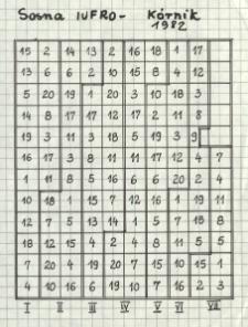 Sosna proweniencyjna IUFRO 1982 Kórnik