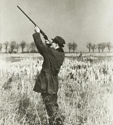 Mieczysław Mniszek Tchorznicki