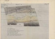 KZG, V 20 A, profil archeologiczny W wykopu