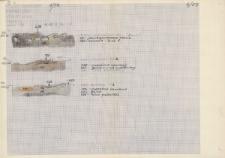 KZG, V 20 A C, profile archeologiczne palenisk