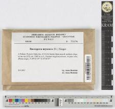 Baeospora myosura (Fr.) Singer