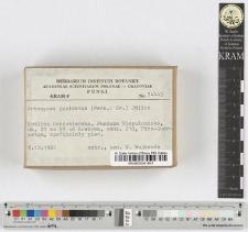 Artomyces pyxidatus (Pers. : Fr.) Jülich