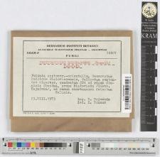 Ceriporiopsis resinascens /Romell/ Domański
