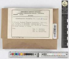 Climacocystis borealis (Fr.) Kotl. & Pouzar