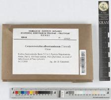 Ceraceomerulius albostramineum (Torrend) Ginns