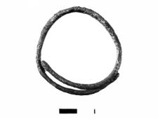 pierścionek (mn) - analiza chemiczna
