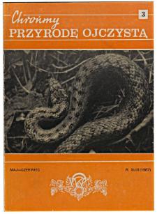 Sit trójłuskowy Juncus triglumis jeden z najrzadszych i zagrożonych składników flory polskiej