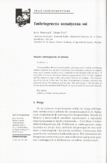 Somatic embryogenesis of soybean