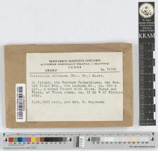 Coniophora olivacea (Fr.:Fr.) Karst.