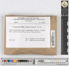Cortinarius varius (Schaeff.: Fr.) Fr.
