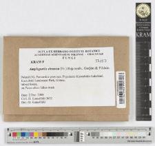 Amyloporia sinuosa (Fr.) Rajchenb., Gorjón & Pildain