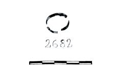 ring fragment (Jezierzyce) - chemical analysis