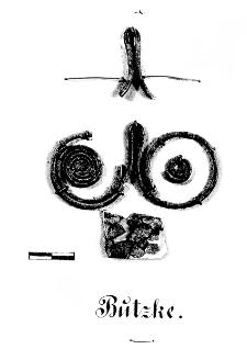 zawieszka binoklowata (Buczek) - analiza chemiczna
