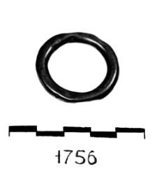 pierścionek (Barnowiec) -analiza chemiczna