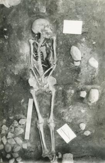 Grób 2-88, pochówek - szkielet