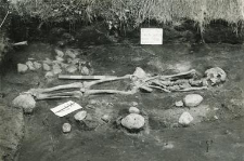 Grave 2-88, burial - skeleton