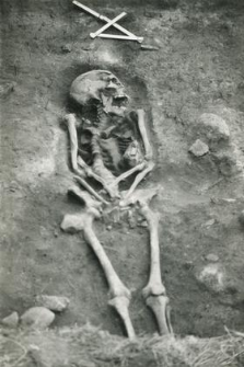 Grave 2-88, inhumation - skeleton, in the grave cut