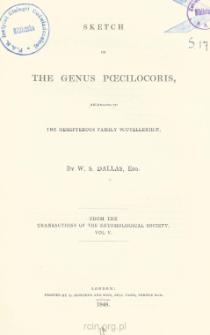 Sketch the Genus Poecilocoris, belonging to the Hemipterous family Scutelleridæ
